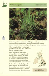inside spread of arable bryophytes