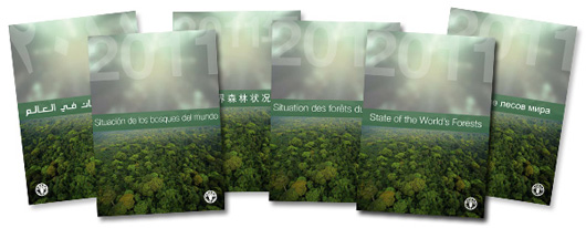 front cover of state of the worlds forest report