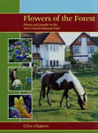 cover of flowers of the forest