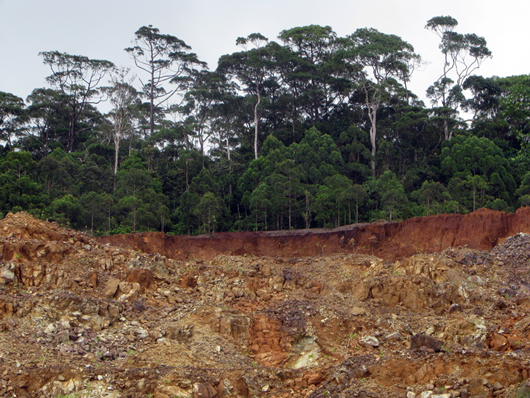 mining in high altitude protected forest