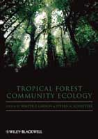 tropical-forestry-carson