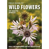 cover of wildflowers of south africa